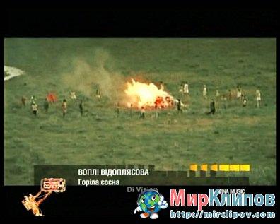 Вопли Видоплясова - Горіла Сосна