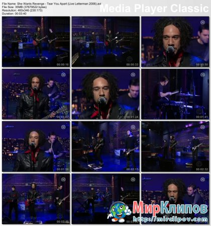 She Wants Revenge - Tear You Apart (Live, Letterman Show, 2006)