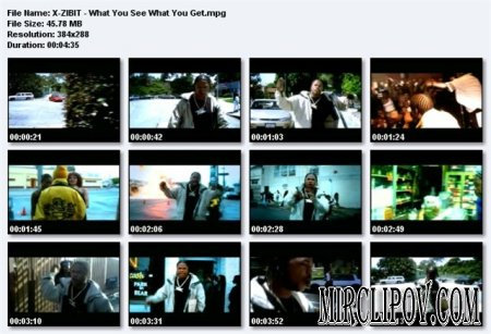 Xzibit - What You See What You Get