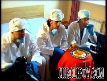 Ленинград - Птичий грипп