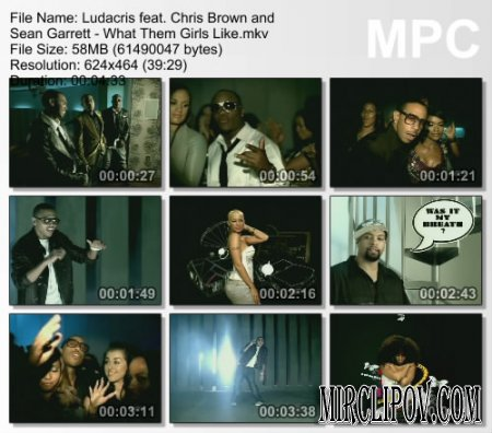 Ludacris feat. Chris Brown and Sean Garrett - What Them Girls Like