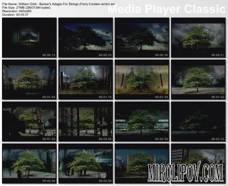 William Orbit - Barber's Adagio For Strings (Ferry Corsten remix)