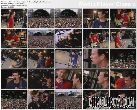 Blink 182 - Carousel (Live At Sydney Big Day Out 2000)