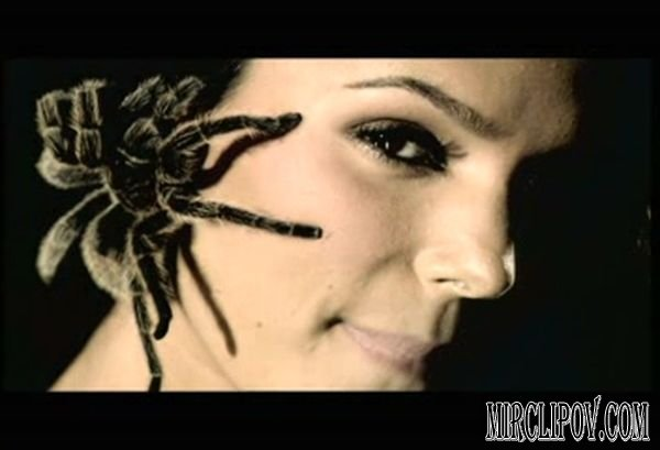 Elize Feat. Jay Colin - Itsy Bitsy Spider