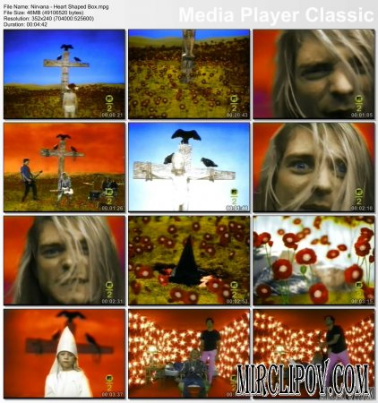 Nirvana - Heard Shaped Box