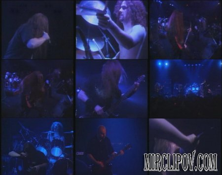 Cannibal Corpse - A Skull Full Of Maggots (Live)