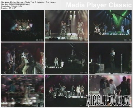 Michael Jackson - Shake Your Body (Live, Victory Tour, LA)