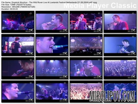 Dropkick Murphys - The Wild Rover (Live)