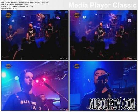 Molotov - Matate Tete (Much Music Live)