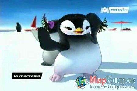 Pigloo - Le Ragga Des Pingouins