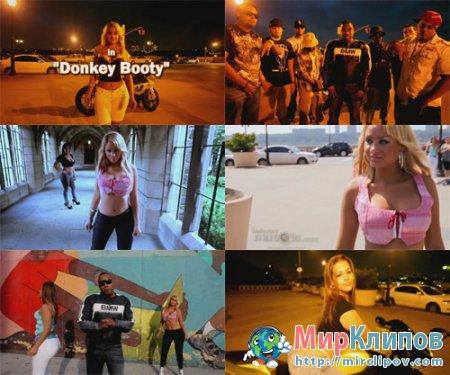 M.I.M.S. - Donkey Booty