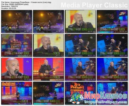 Александр Розенбаум - Утиная Охота (Live)
