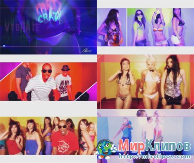Vybrate & DJ Flowfly - Party Crazy