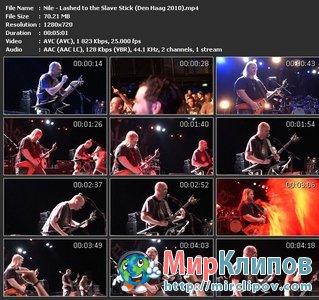 Nile - Lashed To The Slave Stick (Live, Den Haag, 2010)