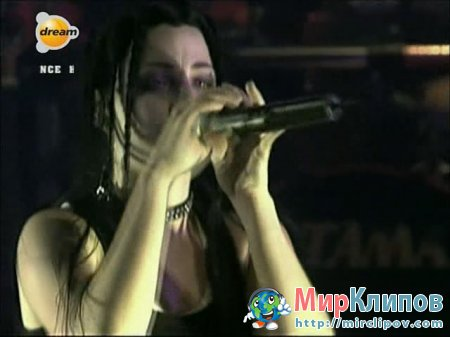 Evanescence - Imaginary (Live, Concert)