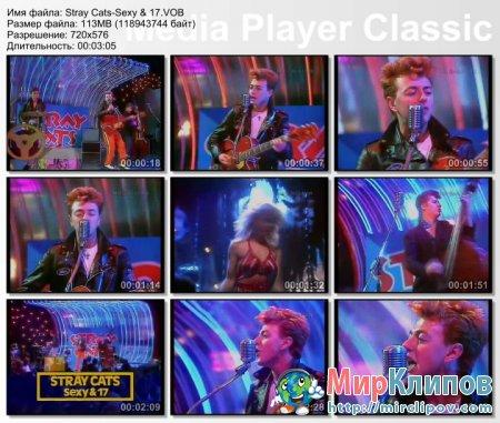 Stray Cats - Sexy & 17 (Live, 1983)