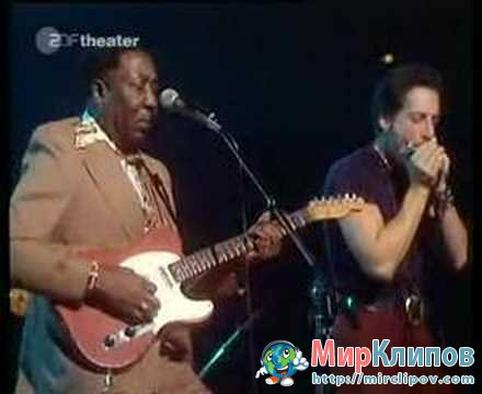Muddy Waters - Blow Wind Blow (Live)