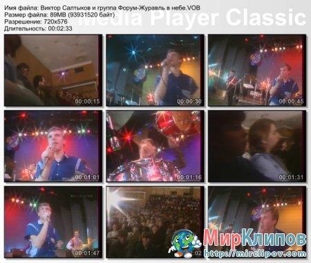 Виктор Салтыков и Форум - Журавль В Небе (Live, 1985)