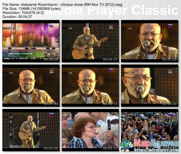 Александр Розенбаум - Утиная Охота (Live, Россия Молодая, 2012)