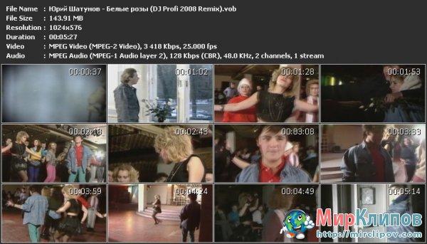 Юрий Шатунов - Белые Розы (DJ Profi 2008 Remix)