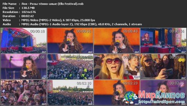 Лоя - Розы Тёмно-Алые (Live, Ello Festival)