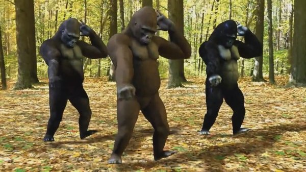 Ego - The Crazy Things We Do (Dancing Gorillas)